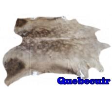 A 9886 Cowhide rug Tapis peau de vache Collection Quebecuir Rustique